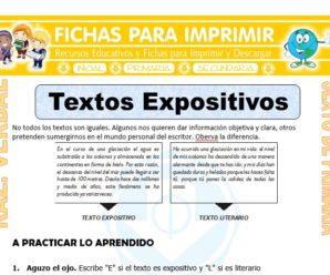 Textos Expositivos para Sexto de Primaria