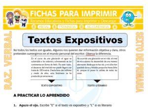 Ficha de Textos Expositivos para Sexto de Primaria