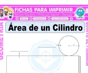 Área de un Cilindro para Quinto de Primaria
