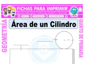 Ficha de Área de un Cilindro para Quinto de Primaria