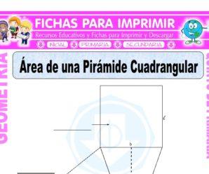 Área de un Pirámide Cuadrangular para Quinto de Primaria
