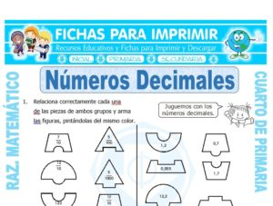Ficha de Números Decimales Ejercicios para Cuarto de Primaria
