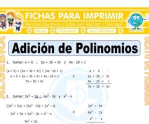 Adición de Polinomios para Sexto de Primaria