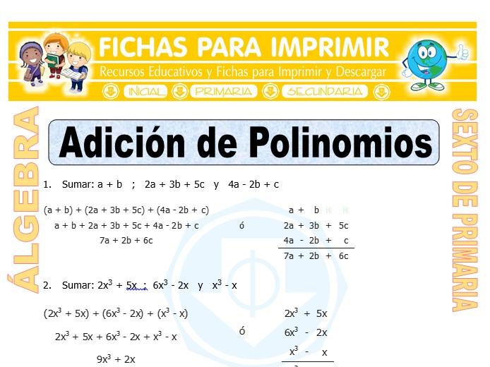 Ficha de Adición de Polinomios para Sexto de Primaria