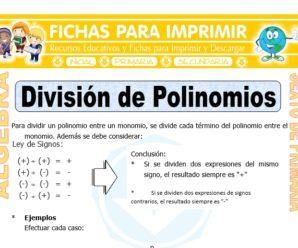División de Polinomios para Sexto de Primaria