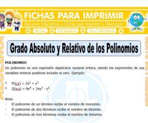Grado Absoluto y Relativo de los Polinomios para Sexto de Primaria