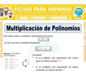 Multiplicación de Polinomios para Sexto de Primaria