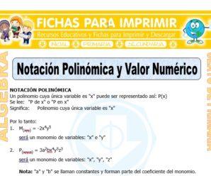 Notación Polinómica para Sexto de Primaria