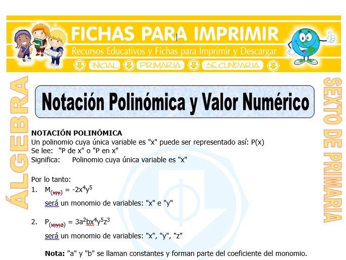 Ficha de Notación Polinómica para Sexto de Primaria
