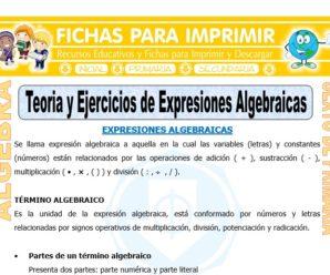 Teoría y Ejercicios de Expresiones Algebraicas para Sexto de Primaria
