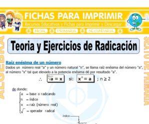 Teoría y Ejercicios de Radicación para Sexto de Primaria